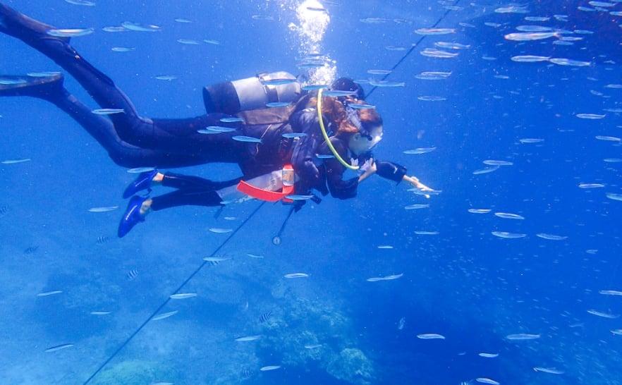 石垣島でお子様もダイビング