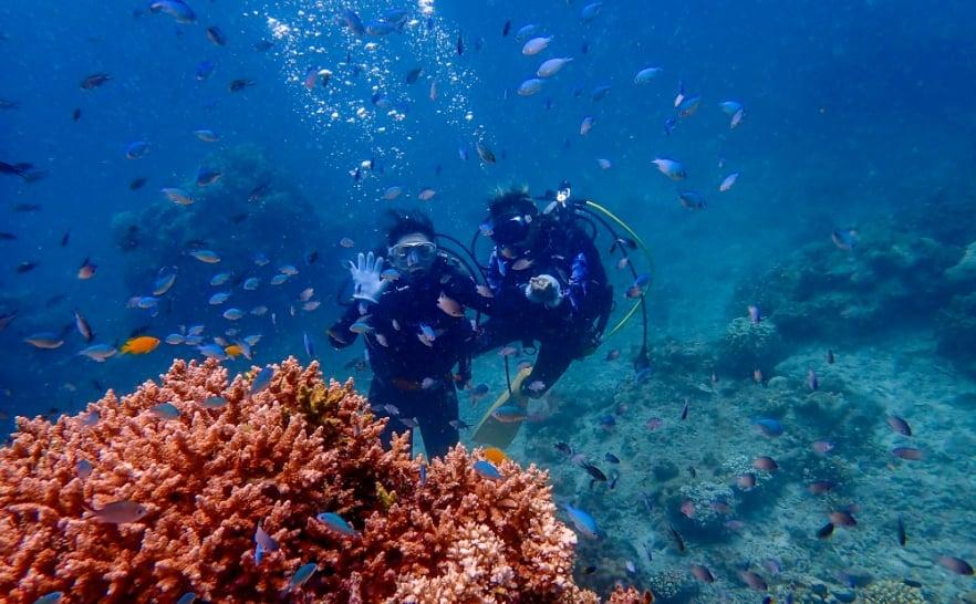 石垣島で体験ダイビング