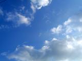 20110305b.jpg