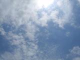 20110511aa.jpg