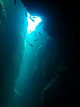 20111031f.jpg