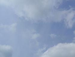 20120417(f).jpg