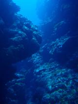 20120609f.jpg