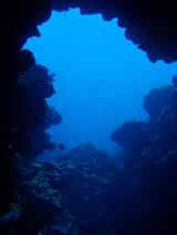 20120711d.jpg