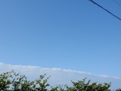 20121211(A).jpg
