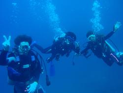 サンゴ満喫ダイビング!